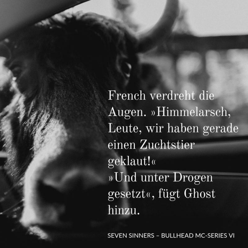 Kayenne Verlag Bullhead Series - Seven Sinners Teaser